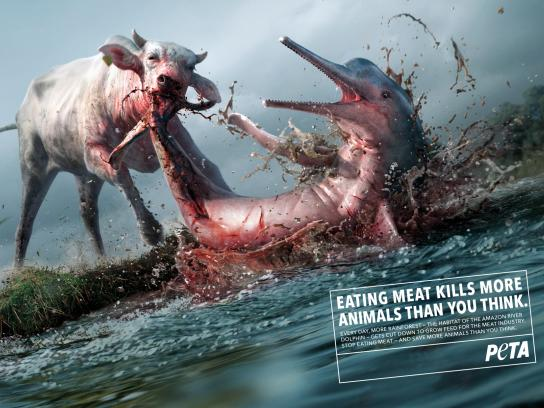 PETA Print Ad - Killer Cows, 1