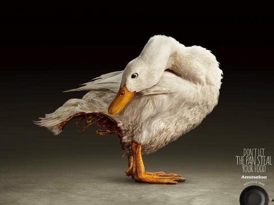 Ammeloo Print Ad - Bottomless Duck
