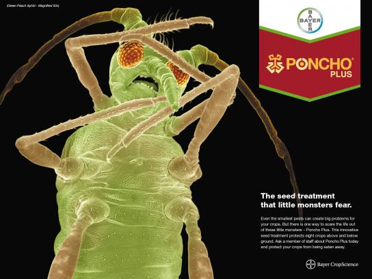 Bayer Print Ad -  Green Peach Aphid