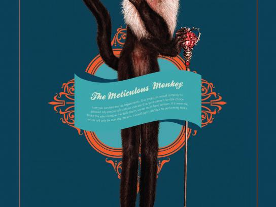 Lady Fozaza Print Ad -  The Meticulous Monkey