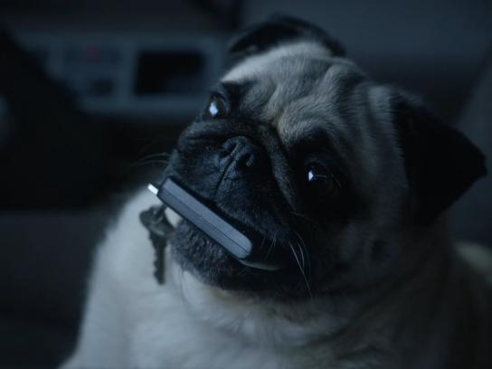 NRMA Film Ad -  For that moment when