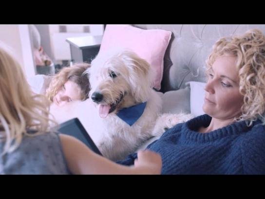 Battersea Dogs & Cats Home Digital Ad -  Who needs who