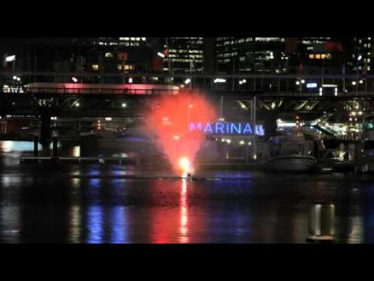 IFAW Ambient Ad -  Darling Harbour Whale Sighting