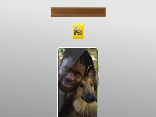 Pedigree Digital Ad - Pedigree SelfieSTIX and DentaStix Studios