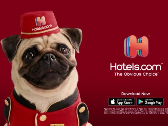 Hotels.com Film Ad - Unlock Secret Prices & Free Nights with the Hotels.com Mascot