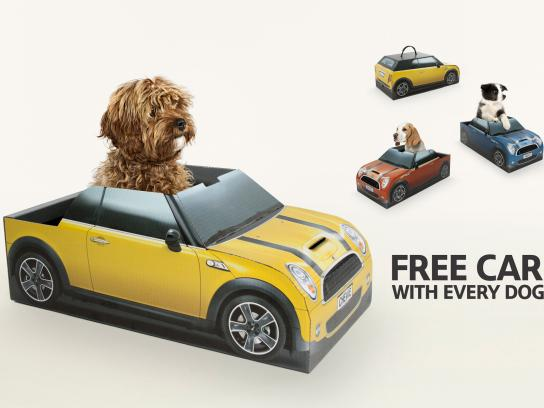 Mini Direct Ad -  Free Dog With Every Car