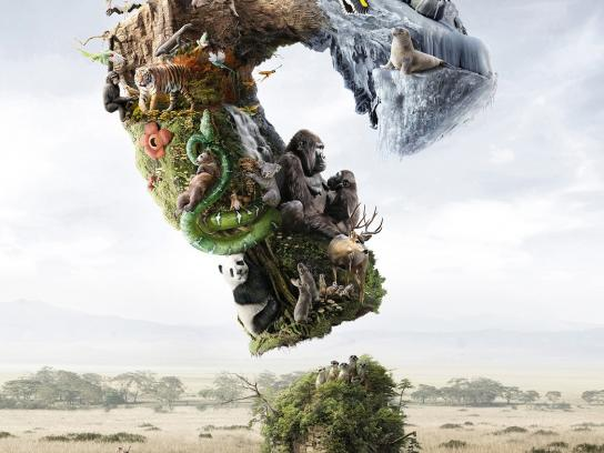 National Geographic Print Ad -  Wildlife