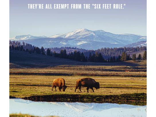 The Resort at Paws Up Print Ad - Montana Distancing