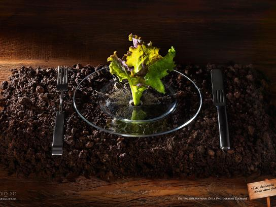 International Food Photography Festival Print Ad -  I went down to my garden, 1