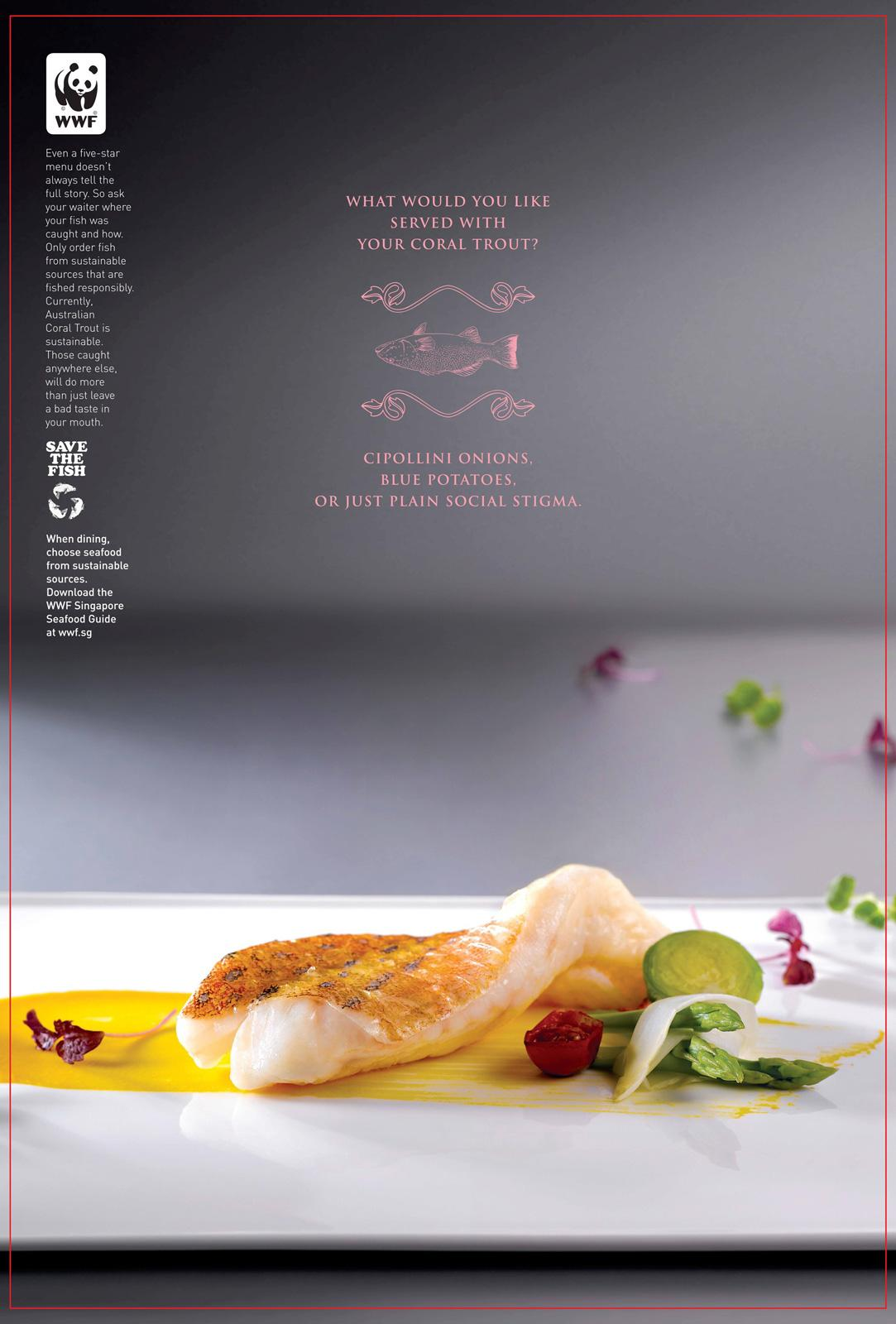 WWF:  Enter the World of Sustainable Seafood, Coral trout